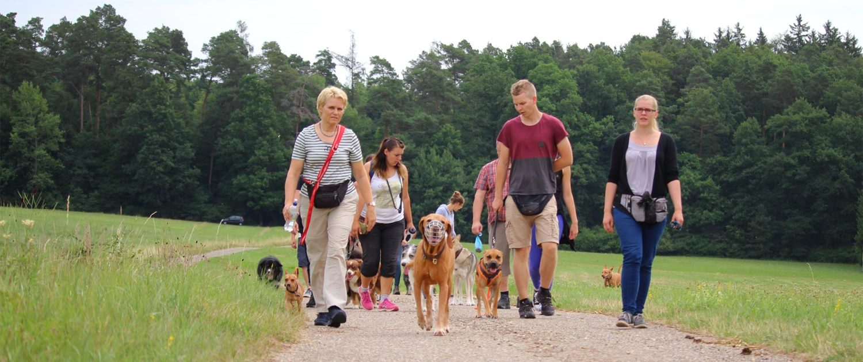 Social Cross Walk Wanderung