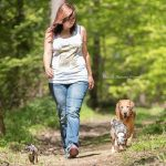 Hund und Mensch: Führung des Hundes in der Hundeschule in Steinenbronn